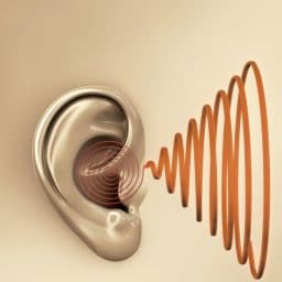 hearing aid sounds louisville