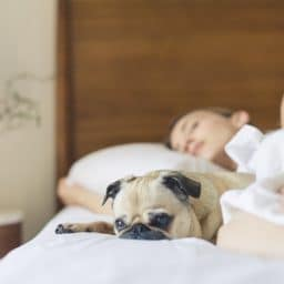 Tips for Sleeping Better with Tinnitus